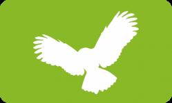 Птицы<br/>Aves