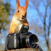 """Конкурс фотографии к """"Дню фотографа"""""""