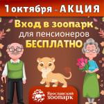 Акция ко Дню пожилого человека