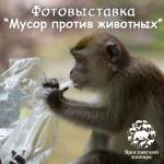 Открытие фотовыставки «Мусор против животных»!