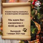 Режим работы зоопарка в новогодние праздники